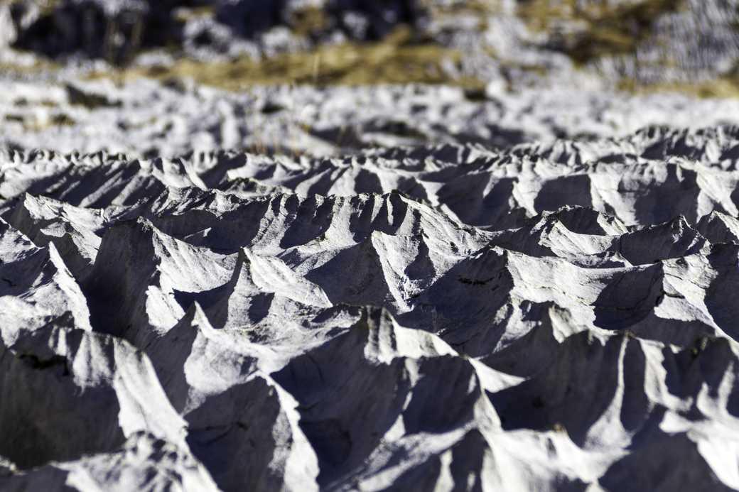 Maquette naturelle - Hors Sentiers